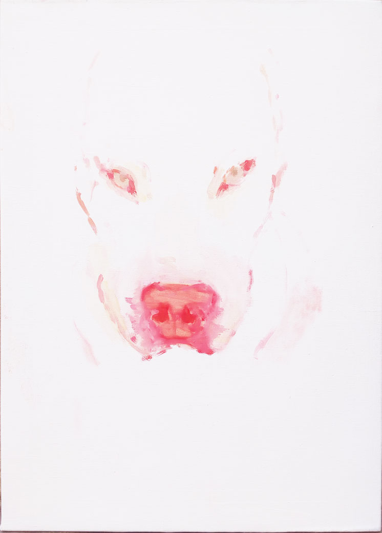 albino-dog-web-2